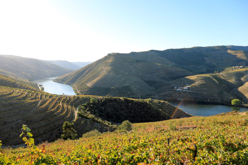 Mit dem Kayak auf dem Douro