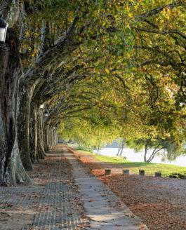 Nordportugal – Flüsse, Strände, Nationalparks und herzliche Menschen